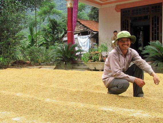 Reisernte bei einer kleinen vietnamesischen Familie - mit Vietnamesisch durch Vietnam
